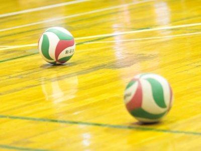 バレーボール体育館